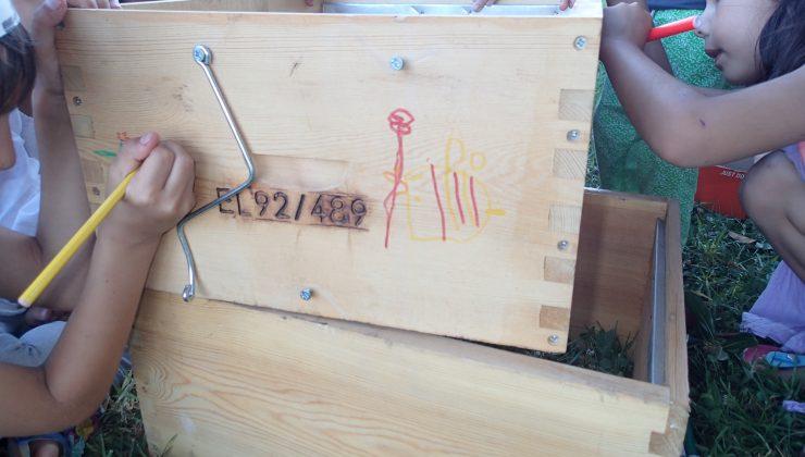 Τα παιδιά ζωγραφίζουν κυψελες